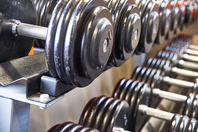 Fitness Aletleri Üretimi